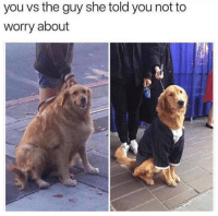 Irl, She, and You: you vs the guy she told you not to  worry about