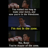 Friendzone: You waited too long to  make your move, and  now you're in the friendzone  I'm not in the zone.  No, Ross!  You're mayor of the zone.