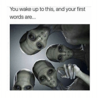 Memes, 🤖, and First: You wake up to this, and your first  Words are.. comment with most likes wins! 👇🏽