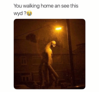 Funny, Lol, and Wyd: You walking home an see this  wyd? Comment below lol