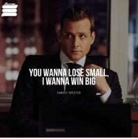 You Wanna Lose Small I Wanna Win Big Harvey Specter Beyonce