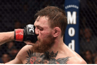 Memes, Smashing, and Thank You: You want smash? YOU GET SMASH!!   Thank you Khabib for shutting up this clown