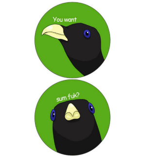 You want sum fuk Lemme Smash Bird meme 1.5 pinback | Etsy: You want  sum fuk? You want sum fuk Lemme Smash Bird meme 1.5 pinback | Etsy
