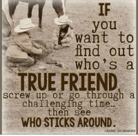 True Friends Meme: you  want to  find out  who's a  E TRUE FRIEND  screw up or go through a  challenging time  then see  WHO STICKS AROUND.  Salmansohn