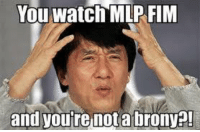 Srsly: You Watch MLP FIM  and you're not a brony?! Srsly