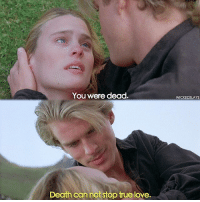 The Princess Bride hEY guYS! i can't stop singing ouat songs helpppp theprincessbride: You were dead.  Death cannot stop true love.  WICKEDSLAYS The Princess Bride hEY guYS! i can't stop singing ouat songs helpppp theprincessbride