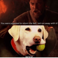 Run, One, and Chosen: You were supposed to return the ball, not run away with it!  WOOr You were the chosen one !
