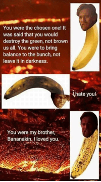 A classic Sent in by: Tyler Machajewski: You were the chosen one! It  was said that you would  destroy the green, not brown  us all. You were to bring  balance to the bunch, not  leave it in darkness.  hate youl  You were my brother,  Bananakin, I loved you A classic Sent in by: Tyler Machajewski