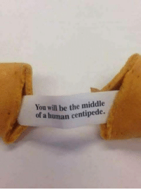 human centipede: You will be the middle  of a human centipede.