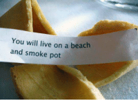 Chinese Food, Food, and Funny: You will live on a beach  and smoke pot I like chinese food.