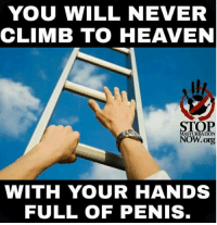 "Dank, Heaven, and Meme: YOU WILL NEVER  CLIMB TO HEAVEN  STOP  NOW.ong  WITH YOUR HANDS  FULL OF PENIS <p>Words of wisdom on this Holy Weekend. via /r/dank_meme <a href=""https://ift.tt/2J8kkLn"">https://ift.tt/2J8kkLn</a></p>"