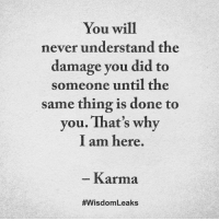 Memes, Karma, and Never: You will  never understand the  damage you did to  someone until the  same thing is done to  you. That's why  I am here  Karma  #Wisdom Leaks <3