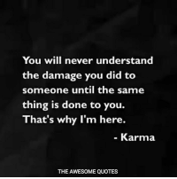 Karma Quotes: You will never understand  the damage you did to  someone until the same  thing is done to you.  That's why I'm here.  Karma  THE AWESOME QUOTES