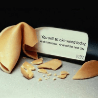 Memes, 🤖, and Weeds: You will smoke weed today.  And tomorrow. Annnnd the next day.  STONER CnC