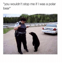 """you wouldn't stop me if was a polar  bear @lemon got stopped"