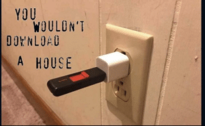 Me🏡irl: YOU  WOULON'T  DOENLOAD  A HOUSE Me🏡irl
