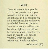 "Ali, Book, and Indeed: YOU  Your sickness is from you, but  you do not perceive it and your  remedy is within you, but you  o not sense it. You presume you  are a small entity, but within you  is enfolded the entire Universe.  You are indeed the evident book,  by whose alphabets the hidden  becomes manifest. Therefore you  have no need to look beyond  yourself. What you seek is  within you, if only you reflect.""  -Imam Ali (AS)"