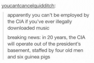 Apparently, Music, and News: youcantcancelquidditch:  apparently you can't be employed by  the CIA if you've ever illegally  downloaded music  breaking news: in 20 years, the CIA  will operate out of the president's  basement, staffed by four old men  and six guinea pigs Pirating music