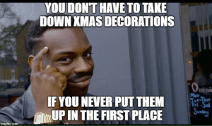 Neighbors, Penis, and Never: YOUDON'T HAVE TO TAKE  DOWN XMAS DECORATIONS  Peni  IF YOU NEVER PUT THEM  UP IN THE FIRST PLACE  Sndo Looking at my neighbors