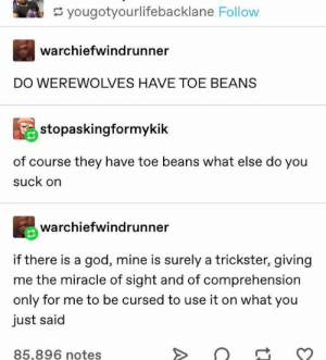 50+ Fresh Tumblr Posts | Page 13 of 25 | funnynmemes: yougotyourlifebacklane Follow  warchiefwindrunner  DO WEREWOLVES HAVE TOE BEANS  stopaskingformykik  of course they have toe beans what else do you  suck on  warchiefwindrunner  if there is a god, mine is surely a trickster, giving  me the miracle of sight and of comprehension  only for me to be cursed to use it on what you  just said  85,896 notes 50+ Fresh Tumblr Posts | Page 13 of 25 | funnynmemes