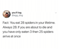 forget that panzee shit, I eat a spoonful every morning: you'll log  @egg_dog  Fact: You eat 28 spiders in your lifetime.  Always 28. If you are about to die and  you have only eaten 3 then 25 spiders  arrive at once forget that panzee shit, I eat a spoonful every morning