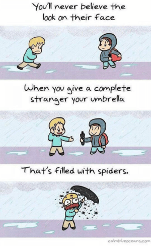 Tumblr, Blog, and Http: You'll never believe the  ook on their face  When you give a complete  stranger your umbrella  That's filled with spiders.  calmblueoceans.com srsfunny:That Look On Their Face