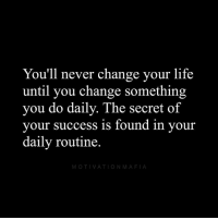 Life, Memes, and Change: You'll never change your life  until you change something  you do daily. The secret of  your success is found in your  daily routine  MOTIVATIONMAFIA Success doesn't happen over night. It happens through an accumulation of tasks you accomplish each and every day. Make it a habit to succeed.