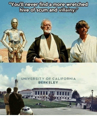 America, Funny, and Instagram: You'll never find a  more Wretched  hive of scum and villainy  UNIVERSITY OF CALIFORNIA  BERKELEY Hahahaha. 🔴www.TooSavageForDemocrats.com🔴 JOINT INSTAGRAM: @rightwingsavages Partners: 🇺🇸👍: @The_Typical_Liberal 🇺🇸💪@theunapologeticpatriot 🇺🇸 @DylansDailyShow 🇺🇸 @keepamerica.usa 🇺🇸@Raised_Right_ 🇺🇸@conservative.female 😈 @too_savage_for_liberals 🇺🇸 @Conservative.American DonaldTrump Trump 2A MakeAmericaGreatAgain Conservative Republican Liberal Democrat Ccw247 MAGA Politics LiberalLogic Savage TooSavageForDemocrats Instagram Merica America PresidentTrump Funny True SecondAmendment