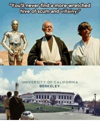 "Memes, California, and Freedom: ""You'll never find a more wretched  hive of scum and villainy  UNIVERSITY OF CALIFORNIA  BERKELEY Where freedom of speech went to die. PayAttentionAmerica"