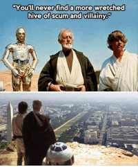 Memes, 🤖, and Hive: You'll never finda more wretched  hive of scum and villainy