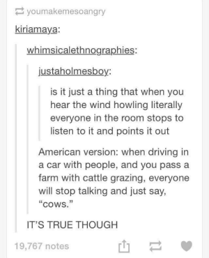 "Driving, True, and American: youmakemesoangry  kiriamaya  whimsicalethnographies:  justaholmesboy:  is it just a thing that when you  hear the wind howling literally  everyone in the room stops to  listen to it and points it out  American version: when driving in  a car with people, and you pass a  farm with cattle grazing, everyone  will stop talking and just say,  cowS.""  IT'S TRUE THOUGH  山-  19,767 notes So does anyone else do this?"
