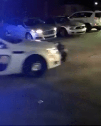 Young black man gets guns pulled on him by police but watch what happens next... what are your thoughts? 😱 (via @thereallilhaiti) WSHH: Young black man gets guns pulled on him by police but watch what happens next... what are your thoughts? 😱 (via @thereallilhaiti) WSHH