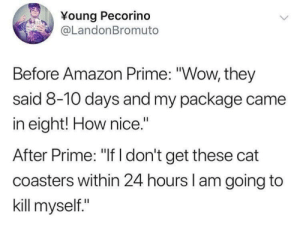 "Amazon, Amazon Prime, and Memes: Young Pecorind  @LandonBromuto  Before Amazon Prime: ""Wow, they  said 8-10 days and my package came  in eight! How nice.""  After Prime: ""If I don't get these cat  coasters within 24 hours l am going to  kill myself."" Evolution of online shopping via /r/memes https://ift.tt/2Dj2TIu"