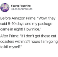 "Amazon, Amazon Prime, and Wow: Young Pecorino  @LandonBromuto  Before Amazon Prime: ""Wow, they  said 8-10 days and my package  came in eight! How nice.""  After Prime: ""If I don't get these cat  coasters within 24 hours I am going  to kill myself."""