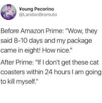 "Amazon, Amazon Prime, and Makeup: Young Pecorino  @LandonBromuto  Before Amazon Prime: ""Wow, they  said 8-10 days and my package  came in eight! How nice.""  After Prime: ""If I don't get these cat  coasters within 24 hours I am going  to kill myself."" Seriously where are my makeup wipes!? These are the 10 swimsuits you need to buy on Prime ASAP- link in bio or betches.co-amazon"