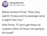 "Amazon, Amazon Prime, and Funny: Young Pecorino  @LandonBromuto  Before Amazon Prime: ""Wow, they  said 8-10 days and my package came  in eight! How nice.""  After Prime: ""If I don't get these cat  coasters within 24 hours I am going to  kill myself."" Me waiting for my @whatdoyoumeme expansion packs to arrive."