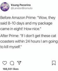 "Amazon, Amazon Prime, and Wow: Young Pecorino  @LandonBromuto  Before Amazon Prime: ""Wow, they  said 8-10 days and my package  came in eight! How nice.""  After Prime: ""If I don't get these cat  coasters within 24 hours I am going  to kill myself.""  166,551 likes"
