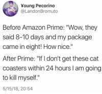 "Amazon, Amazon Prime, and Dank: Young Pecorino  @LandonBromuto  Before Amazon Prime: ""Wow, they  said 8-10 days and my package  came in eight! How nice.""  After Prime: ""If I don't get these cat  coasters within 24 hours I am going  to kill myself.""  5/15/18, 20:54"