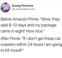 """Amazon, Amazon Prime, and Wow: Young Pecorino  @LandonBromuto  Before Amazon Prime: """"Wow, they  said 8-10 days and my package  came in eight! How nice.""""  After Prime: """"If I don't get these cat  coasters within 24 hours I am going  to kill myself."""" Accurate."""