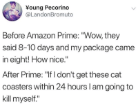 """Amazon, Amazon Prime, and Wow: Young Pecorino  @LandonBromuto  Before Amazon Prime: """"Wow, they  said 8-10 days and my package came  in eight! How nice.""""  After Prime: """"If I don't get these cat  coasters within 24 hours I am going to  kill myself."""" me irl"""
