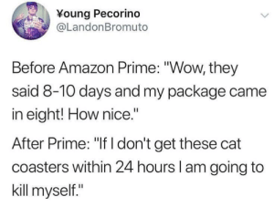 """Amazon, Amazon Prime, and Tumblr: Young Pecorino  @LandonBromuto  Before Amazon Prime: """"Wow, they  said 8-10 days and my package came  in eight! How nice.""""  After Prime: """"If I don't get these cat  coasters within 24 hours I am going to  kill myself."""" whitepeopletwitter: We became spoiled"""