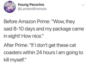 """Amazon, Amazon Prime, and Life: Young Pecorino  @LandonBromuto  Before Amazon Prime: """"Wow, they  said 8-10 days and my package came  in eight! How nice.""""  After Prime: """"If I don't get these cat  coasters within 24 hours l am going to  kill myself."""" Amazon Prime has been life changing"""