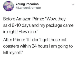 """Amazon, Amazon Prime, and Shopping: Young Pecorino  @LandonBromuto  Before Amazon Prime: """"Wow, they  said 8-10 days and my package came  in eight! How nice.""""  After Prime: """"If I don't get these cat  coasters within 24 hours l am going to  kill myself."""" Online shopping these days"""