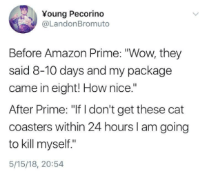 """Amazon, Amazon Prime, and Wow: Young Pecorino  @LandonBromuto  Before Amazon Prime: """"Wow, they  said 8-10 days and my package  came in eight! How nice.""""  After Prime: """"If I don't get these cat  coasters within 24 hours I am going  to kill myself.""""  5/15/18, 20:54 Its my Prime concern"""