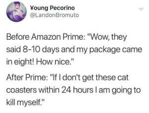 "Amazon, Amazon Prime, and Dank: Young Pecorino  @LandonBromuto  Before Amazon Prime: ""Wow, they  said 8-10 days and my package came  in eight! How nice.""  After Prime: ""If I don't get these cat  coasters within 24 hours l am going to  kill myself."" meirl by ThePirateRS FOLLOW HERE 4 MORE MEMES."