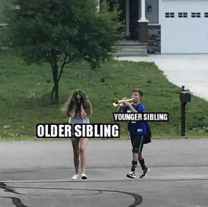 Funny, Memes, and Images: YOUNGER SIBLING  OLDER SIBLING Sibling Memes for Sharing on National Sibling Day - annoy your siblings by sharing one of these funny images #siblings #siblingrivalry #siblinggoals #funny #funnymemes #funnymemesdaily #funnypictures #brotherandsister #brotherlylove #brother #sisters #sistersquad