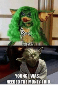 Young Yoda: YOUNGIWAS  NEEDED THE MONEY-IDID Young Yoda