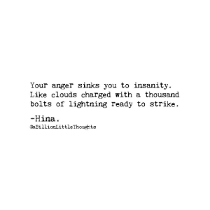 Insanity: Your anger sinks you to insanity  Like clouds charged with a thousand  bolts of lightning ready to strike.  -Hina  @aBillionLittle Thoughts