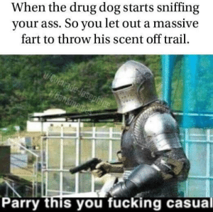 Ass, Fucking, and Drug: your ass. So you let out a massive  fart to throw his scent off trail  When the drug dog starts sniffing  1/Cofmrade-losephine  Bankimemes  Parry this you fucking casual Why did he keep sniffing?
