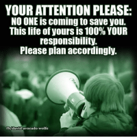 please no: YOUR ATTENTION PLEASE.  NO ONE is coming to save you.  This life of yours is 100% YOUR  responsibility.  Please plan accordingly.  fb/david avocado wolfe